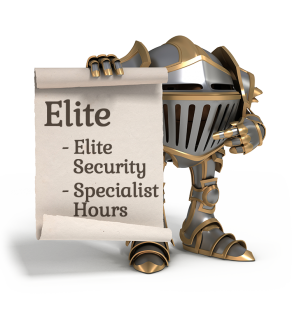 Enterprise Website Security